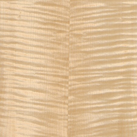 Sycamore-English-Quartered-Figured